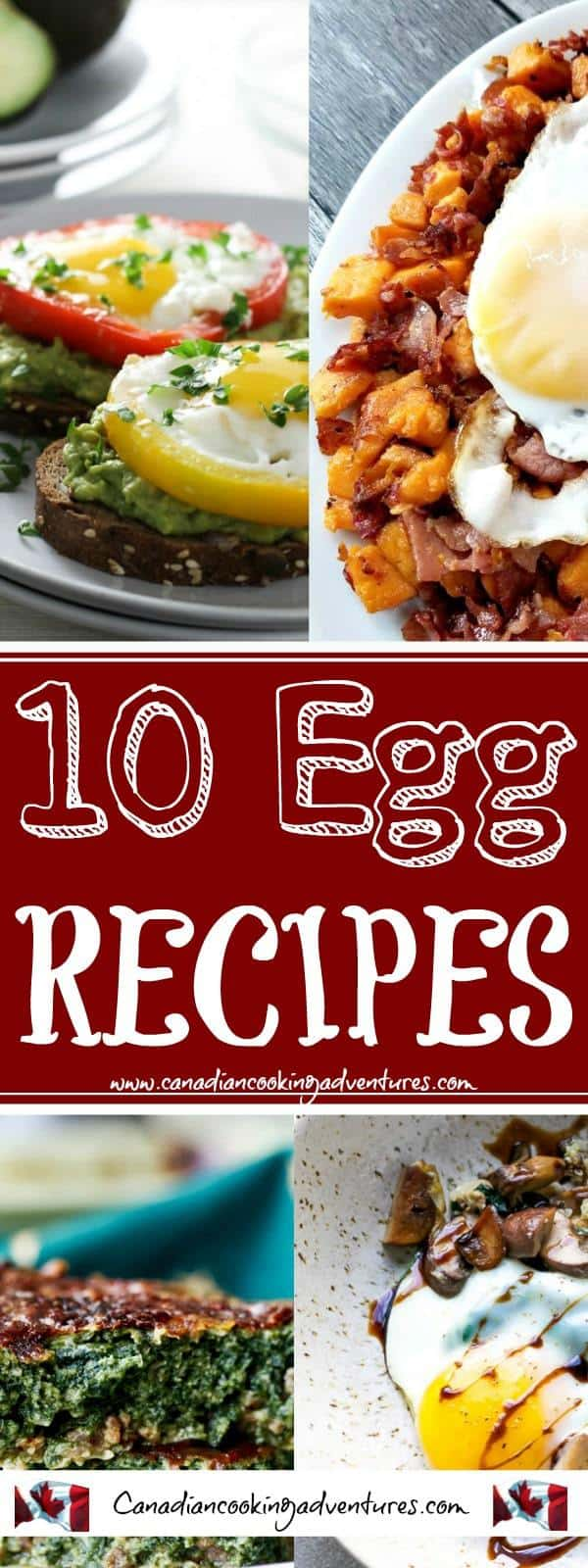"""10 AMAZING EGG RECIPES"" These recipes can be enjoyed any time of the day! Eggs are so versatile! #CANADIANCOOKINGADVENTRES #Breakfast #Lunch #Dinner #eggs #egg #Recipes #breakfastrecipes #foodnetwork #avocado #avocados #sweetpotato"