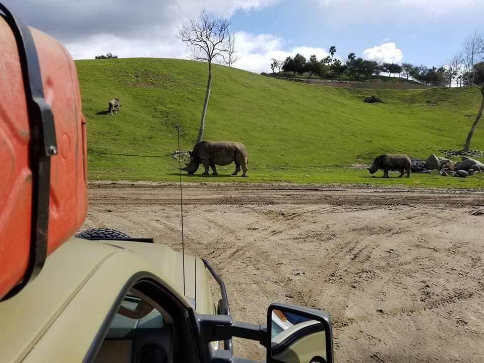 Caravan Safari San Diego Safari Park